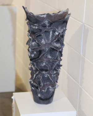 Denise Lithgow Banksia Bark Vessel