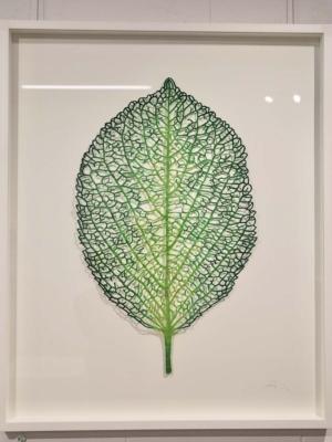 Meredith Woolnough Hydrangea Leaf