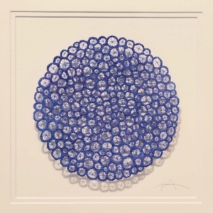 Meredith Woolnough Nature Study 3 Corallite Pattern