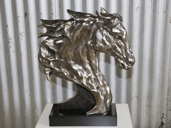 Peter Lewis Equus Warrior
