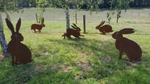 Hare Escapades