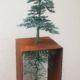 076-1 UlanandRachel MurrayandBurns Little Gingko  copper Garden 2021