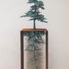 076-3 UlanandRachel MurrayandBurns Little Gingko  copper Garden 2021