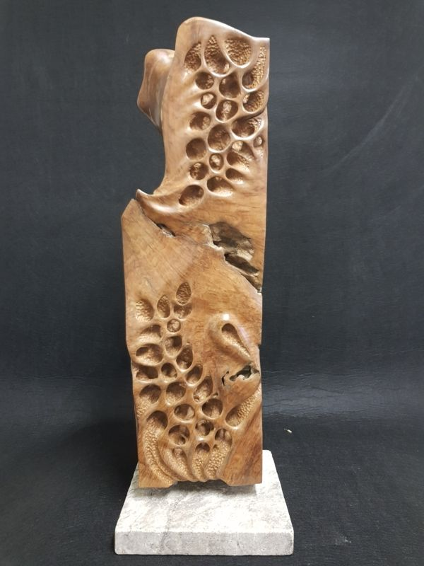 114-1 Colin Tapping Erosion  timber Indoor 2021